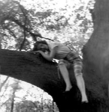 Amanda in a Tree